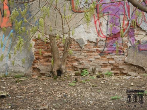 Calcanul clădirii din strada Paul Orleanu nr. 8 (văzut din strada Apolodor nr. 7)