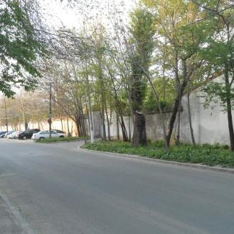 Zidul tencuit și acoperit pe strada Ilioara